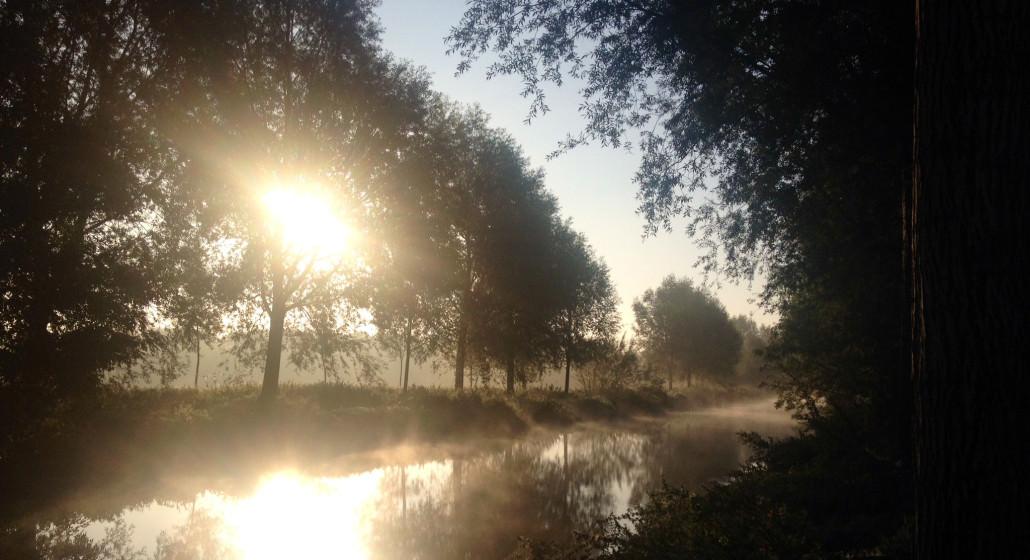 river-stour-autumn-morning-2014